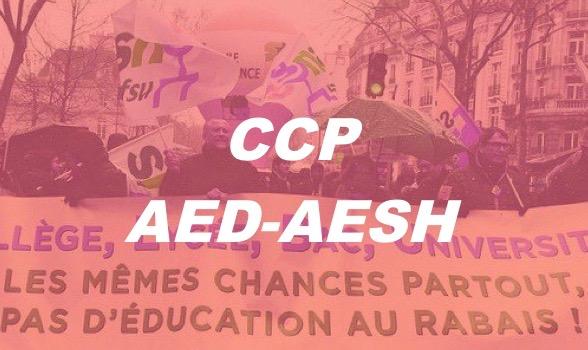 CCP AED-AESH du vendredi 1er juin 2018