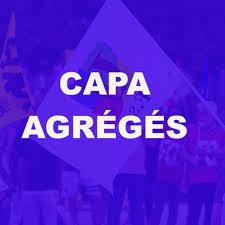 CAPA agrégés : Déclaration des représentants FSU